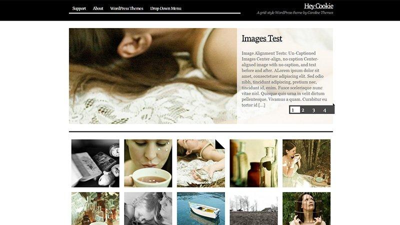 Temas de WordPress para todos os gostos, feitos para você customizar e criar seu portfólio com um design inovador (16)
