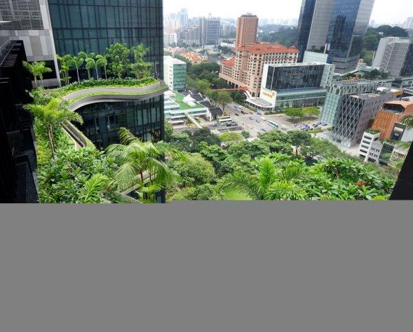 Hotel com arquitetura criativa e sustentabilidade (7)